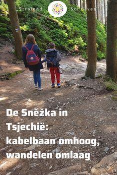Camper, Czech Republic, Travel Inspiration, Travel Destinations, Places To Go, Country Roads, Europe, Explore, Dresden