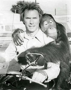 Clint Eastwood and the orangutan Clyde on the set of Every Which Way but Loose Clint Eastwood, Photo Vintage, Vintage Photos, Peliculas Western, Fritz Lang, Mel Gibson, Sean Connery, Stanley Kubrick, Alfred Hitchcock