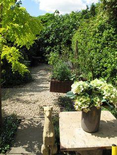 Abigail Ahern garden.