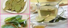 Tome isto em jejum por 4 dias para eliminar a gordura da barriga e desinchar o corpo! - Receitas e Dicas Caseira