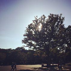 上野恩賜公園。