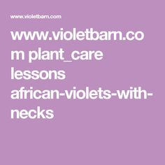 www.violetbarn.com plant_care lessons african-violets-with-necks