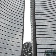 Milano.  Contemporary contrast. Contrasti contemporanei.  #scentandcharm #milano #milan #piazzagaeaulenti #boscoverticale #ilovemilan #travel #traveller #iloveitaly #instagramers #instamoment #igermilano  #style #photooftheday #picoftheday by scentandcharm