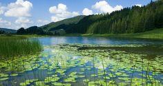 Lac de Lamoura dans le Haut-Jura | Jura, France | Photo Stéphane Godin/Jura Tourisme | #JuraTourisme