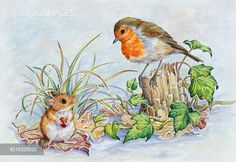 PortForLio - Robin on a tree stump with woodmouse Watercolor Flowers, Watercolor Paintings, Animal Drawings, Art Drawings, Rabbit Drawing, Different Forms Of Art, Christmas Bird, Christmas Paintings, Christmas Illustration