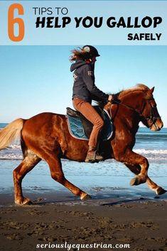 Horseback Riding Tips, Horse Riding Tips, Horse Tips, Horse Training, Training Tips, Horse Galloping, Horse Facts, Andreas, Pet Life