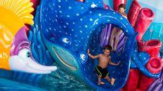 Croisière: à bord du Disney Dream-----------------Le navire possède aussi une zone de jeu pour enfants mettant en vedette les personnages du film Trouver Némo.