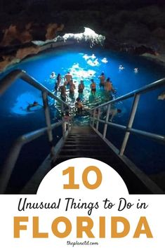 10 Unusual Things to Do in Central Florida That You've Probably Have Not Heard Of