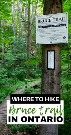 Get Outdoors, The Great Outdoors, Places To Travel, Places To See, Waterfall Trail, Ontario Travel, Canadian Travel, Hiking Tips, Best Hikes