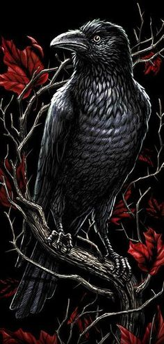 Hugin Munin Tattoo, Corvo Tattoo, Voodoo Tattoo, Raven And Wolf, Gothic Wallpaper, Death Art, Gothic Fantasy Art, Beautiful Dark Art, Raven Art