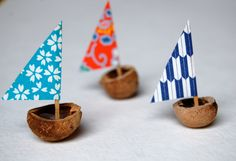 hickory nut sail boats