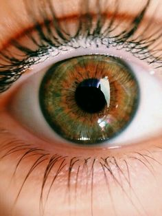 Your eye in the light