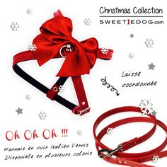 harnais chien dog harness noël dog christmas ribbon leash laisse noeud rouge cadeau gift sweetie dog www.sweetiedog.com