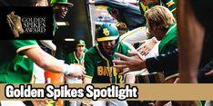 Baylor's Nick Loftin has shown improvements each season he's been on campus. Baseball Tips, Baseball Cards, Golden Spike, Baseball Equipment, Bats, Third, Coaching, Youth, American
