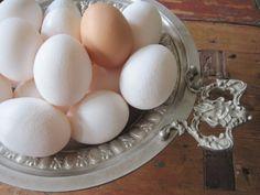 Aioli  3 Ekologiska Äggulor  3 klyftor Vitlök  1½ dl Kallpressad Olivolja  1½ dl neutral Rapsolja  ½ pressad Citron  1½ -2 krm Havssalt med örter  Riv vitlöken fint, blanda med den mindre mängden salt och äggulor i en skål.  Tillsätt oljan i en fin stråle, vispa riktigt hårt. Det går enklast med elvisp eller stavmixer.  Smaka av med citron och eventuellt mer salt, så det blir en angenäm brytning mellan syran och sältan.  Låt stå i kylen att mogna någon timme innan serveringen, så kommer…