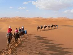 Morocco desert trips One of the best-established tour operators for Morocco, with over 30 years experience. Tailor-made tours and holidays include everything from camel trekking and skiing to cultural tours and beach holidays.