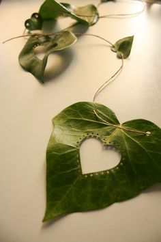 """Ivy leaves can be a nice material lo cut out, punch, paint, decorate and a beautiful way to say """"I love you"""" theopenstudio79.blogspot.com.es Arreglos Ikebana, Leaf Projects, Ephemeral Art, Embroidered Leaves, Deco Nature, Leaf Crafts, Painted Leaves, Arte Floral, Leaf Art"""