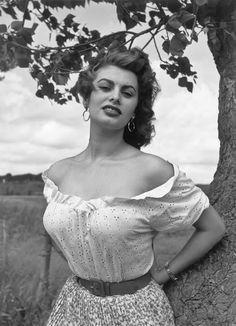 Sophia loren big tits help you?