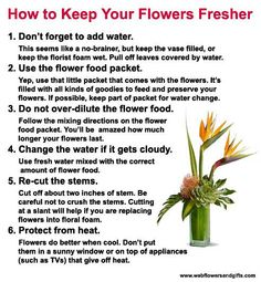 Good list for sharing with floral customers online or to print out!  Keep your flowers fresher, longer. from our friends at www.webflowersandgifts.com. #fresh #flowers #florist #tips