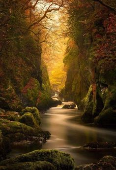 Fairy Glen Old Colwyn, North Wales