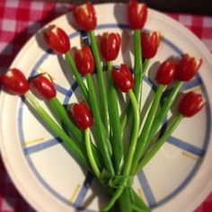 Fluwel's Tulpenland - Tulpen in allen Varianten #Fluwelstulpenland www.fluwelstulpenland.de