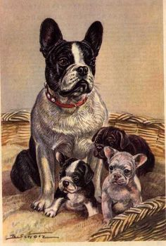 Vintage Dog Paintings | French Bulldog Print - German $15.00