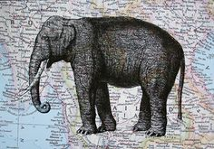 Elephant Print on Map of Thailand and Burma - 5 x 7 Asian Elephant Print by CrowBiz on Etsy https://www.etsy.com/listing/97789868/elephant-print-on-map-of-thailand-and