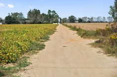 40+/- Acre Auction, Elberta, AL  Cleared for farming or development  5/13@1pm EDT 800-650-8720