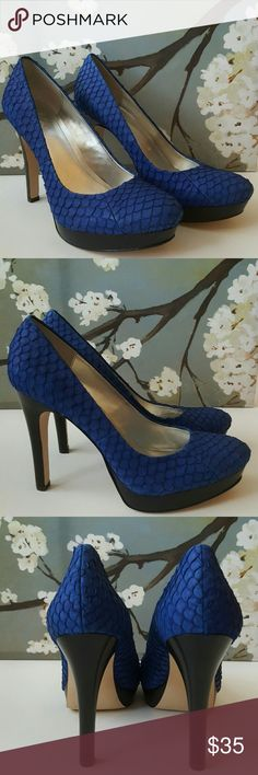 """Calvin Klein """"Kendall"""" Royal Blue Platforms Pumps Very good to excellant pre-owned condition. Silvertone foot bed  with padding. Round-toe platform pump. Beautiful shoe in person...very stylish. 4.5"""" heel. Textured pattern. Calvin Klein Shoes Platforms"""