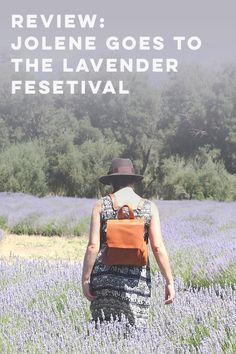 Jolene Goes to the Lavender Festival Cherry Valley, My Favorite Color, Lavender, Lavandula Angustifolia