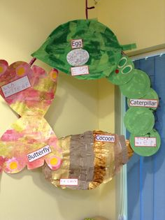 From my classroom: Very Hungry Caterpillar life cycle hoop display