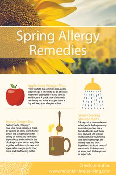 Remedies for Sinusitis and Allergies - Everyday Remedy Natural Asthma Remedies, Cold Remedies, Natural Cures, Herbal Remedies, Health Remedies, Holistic Remedies, Natural Healing, Spring Allergies, Seasonal Allergies