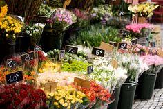 farmers markets of the world, a hobby