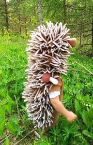 Hedgehog costume / Toddler Costume/ Kids Costume / hedgehog dress up /animal costume/ handmade costume / Halloween costume - hedgehog costume made from soft fleece and consists of pants and ,vest with hood.