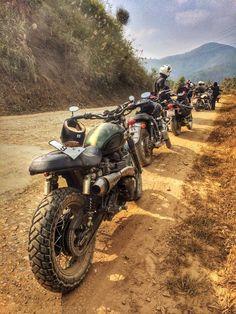 Scrambler bike motorcycle triumph
