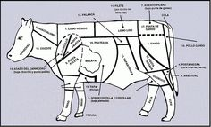 Cortes de Carne Bovina no Chile