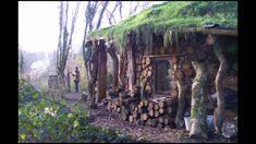 Bioconstrução - Telhado verde