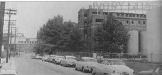 Proctor & Gamble, Western Avenue, Staten Island, NY - Grandpa Segarra worked here