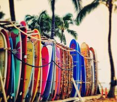 Surfboard rack vs. ski/snowboard rack ;)