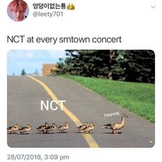 NCT: We really don't have a leader *everyone looks to Taeyong* . TY: *nods* NCT: Yeah see ☺ memes funny nct Nct Taeyong, K Pop, League Of Legends, Trauma, Nct Life, Funny Kpop Memes, Love Memes, Fandoms, Kpop Groups