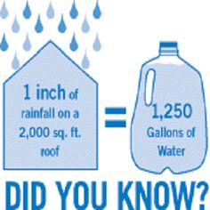 A fact About rain water collection ..... Might want to take this into consideration when deciding how big of barrel (or barrels) to use!!
