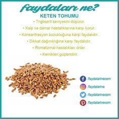 #keten tohumu #keten tohumunun faydaları #faydaları #zararları #faydalarıne #faydalarine