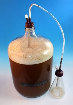 Harvest Commercial Yeast for your Homebrew