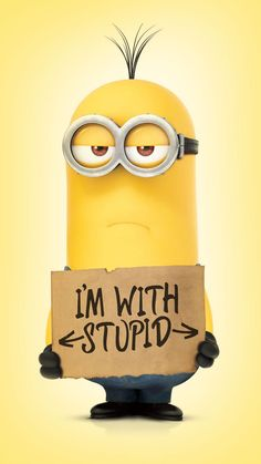A Cute Collection Of Despicable Me Minions Wallpapers Images HD Minions Bob, Minions Cartoon, Minions Images, Funny Minion Pictures, Cute Minions, Minion Movie, Minion Jokes, Minions Despicable Me, Despicable Me