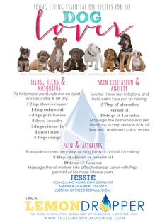 Essential oils aren't just for us 2 legged folk... our 4 legged friends can reap these awesome benefits too. Flea and tick prevention, aching joints (like hip dysplasia), and skin problems (like mange) can all be helped dramatically with the use of Young Living essential oils.
