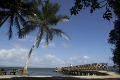 #elfoton14 @elfoton_es #categoria #Paisaje www.elfoton.com Usuario: Luis (República Dominicana) - Azul - Tomada en República Dominicana el 07/01/14