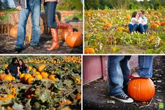 Awe pumpkin patches! I'd love to have it in an apple field!! That's my favorite time of the year