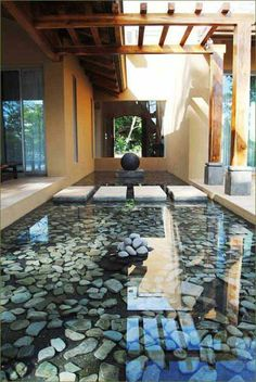 Many people have a dream of building their own water garden or backyard ponds around the home. Water garden and backyard ponds are a type of man-made water feature. They have been a home landscaping…MoreMore