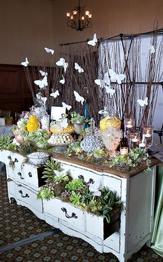 candy station on antique dresser with plants in drawers.