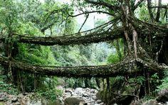 Estructura natural impresionante